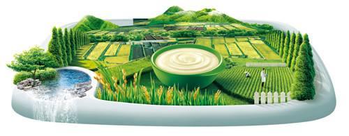 ISO 22000 食品安全管理体系(FSMS)